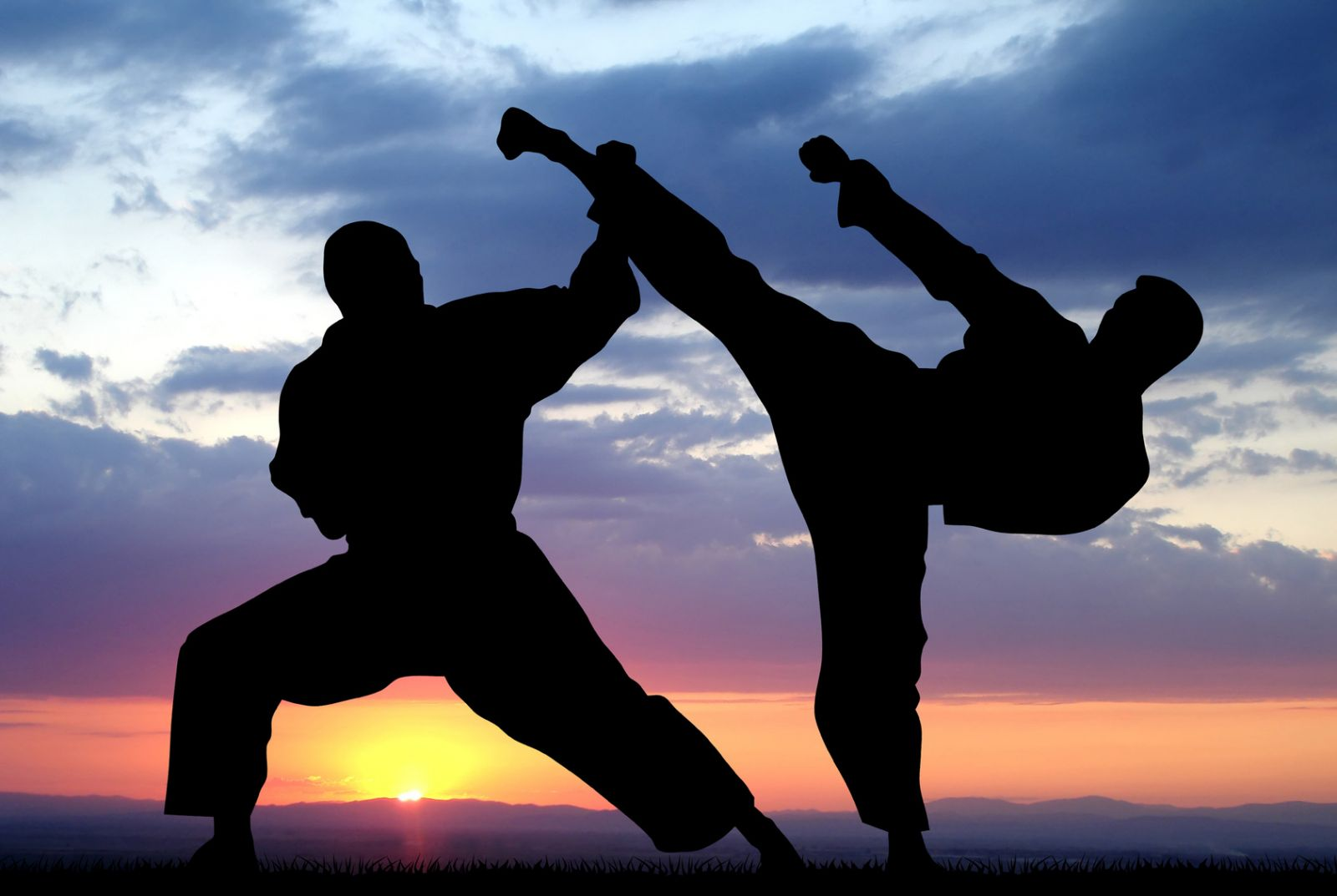 Боевые искусства. Спортивное и боевое единоборство