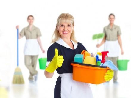 Нанимать ли домработницу?